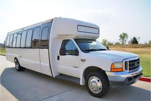 20 Passenger Shuttle Bus Rental Stateline